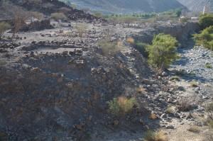 Wadi Edge at HLO1 (seen from nort)